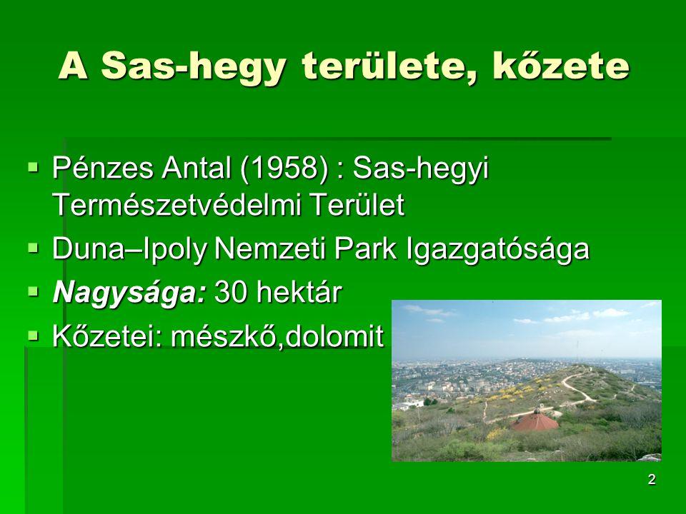 2 A Sas-hegy területe, kőzete  Pénzes Antal (1958) : Sas-hegyi Természetvédelmi Terület  Duna–Ipoly Nemzeti Park Igazgatósága  Nagysága: 30 hektár