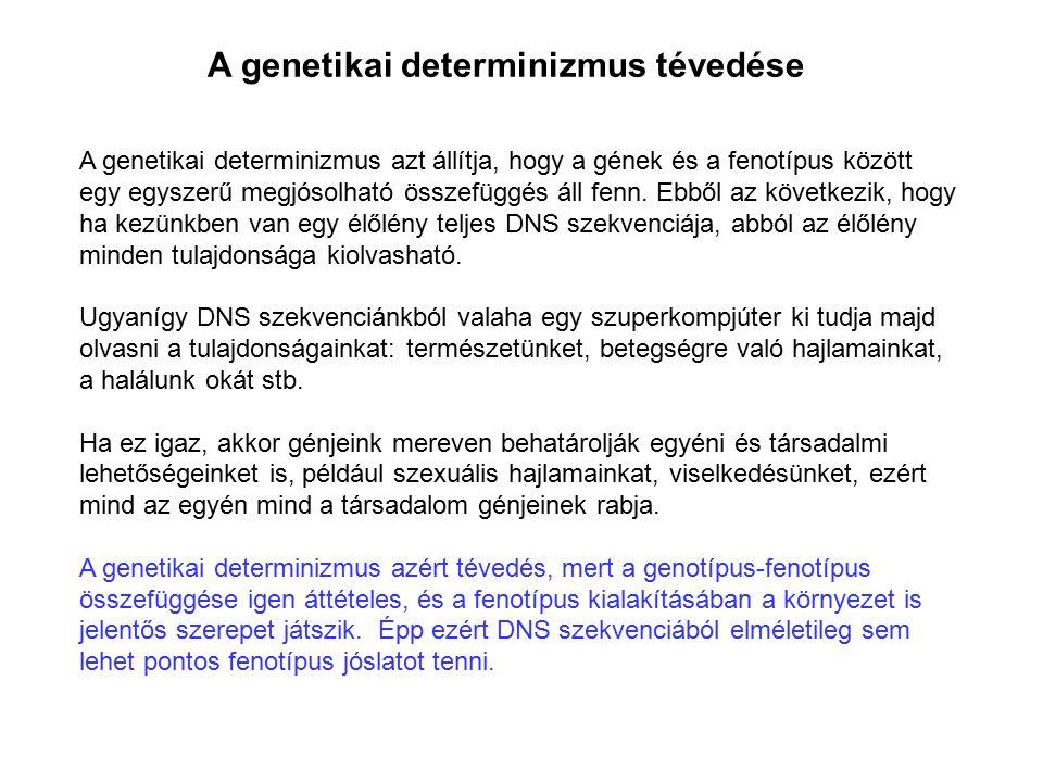 A genetikai determinizmus tévedése A genetikai determinizmus azt állítja, hogy a gének és a fenotípus között egy egyszerű megjósolható összefüggés áll