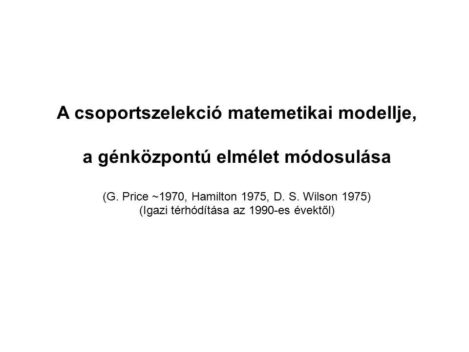 A csoportszelekció matemetikai modellje, a génközpontú elmélet módosulása (G. Price ~1970, Hamilton 1975, D. S. Wilson 1975) (Igazi térhódítása az 199