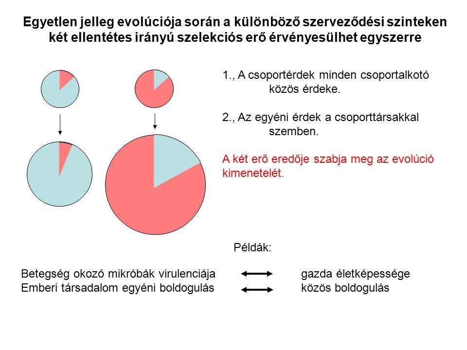 Egyetlen jelleg evolúciója során a különböző szerveződési szinteken két ellentétes irányú szelekciós erő érvényesülhet egyszerre 1., A csoportérdek mi