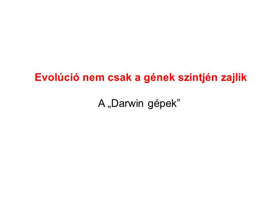 """Evolúció nem csak a gének szintjén zajlik A """"Darwin gépek"""""""