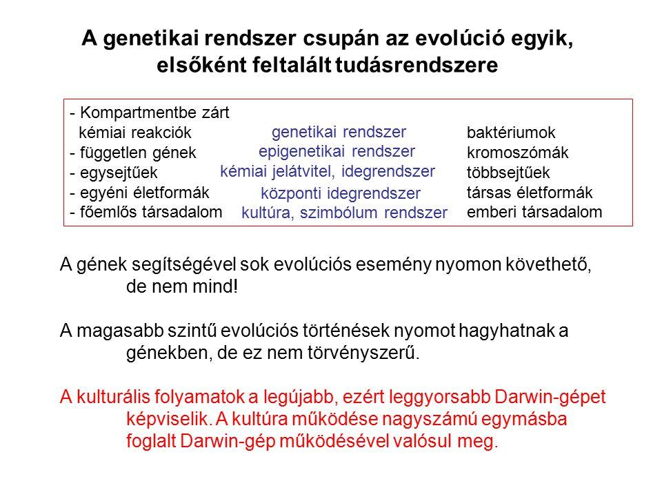 - Kompartmentbe zárt kémiai reakciók baktériumok - független génekkromoszómák - egysejtűektöbbsejtűek - egyéni életformáktársas életformák - főemlős t