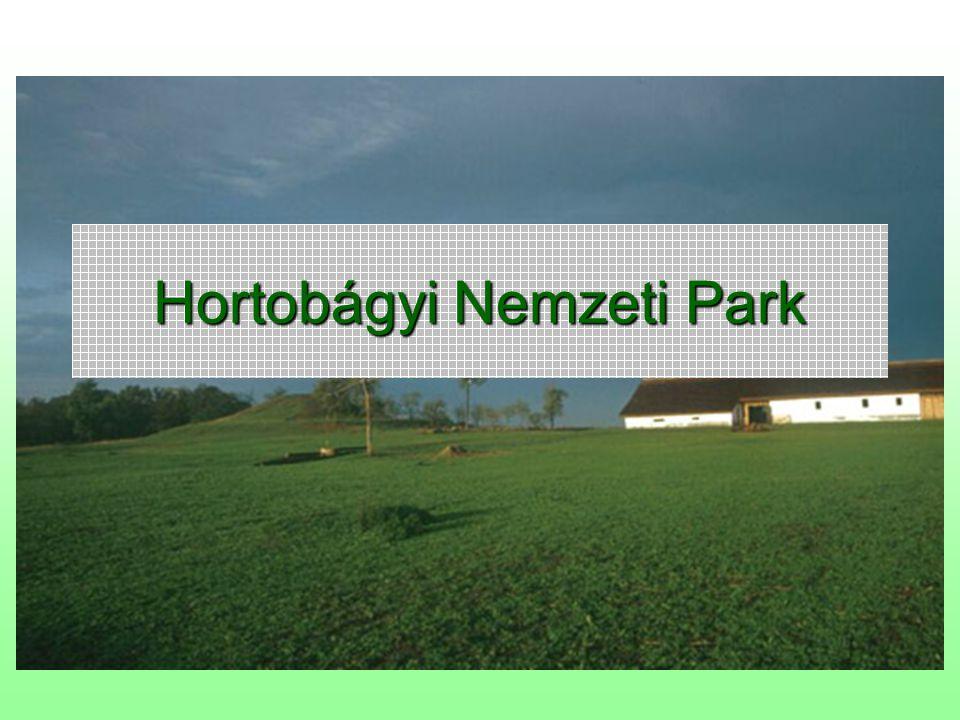 2 Történet A 82.000 ha nagyságú Hortobágyi Nemzeti Parkot 1973.