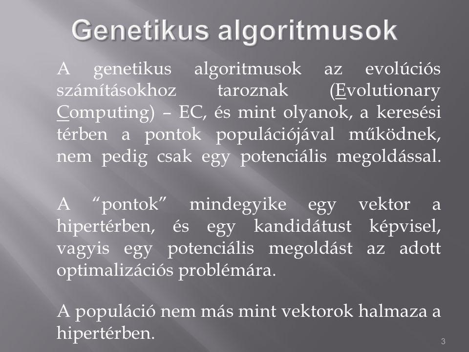 3 A genetikus algoritmusok az evolúciós számításokhoz taroznak (Evolutionary Computing) – EC, és mint olyanok, a keresési térben a pontok populációjával működnek, nem pedig csak egy potenciális megoldással.