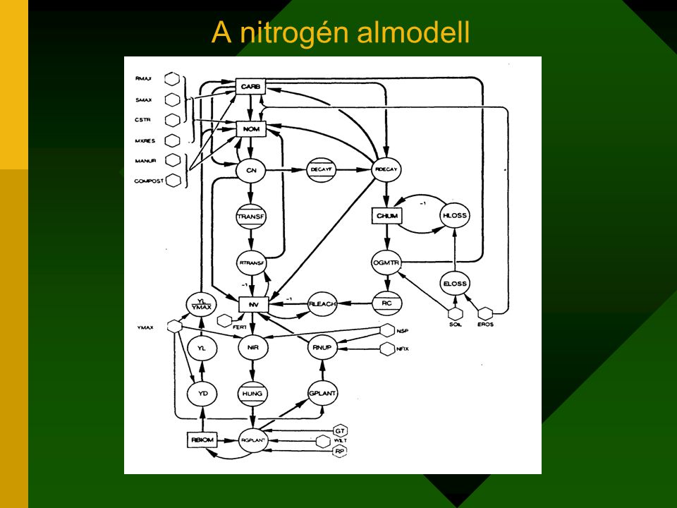 A nitrogén almodell