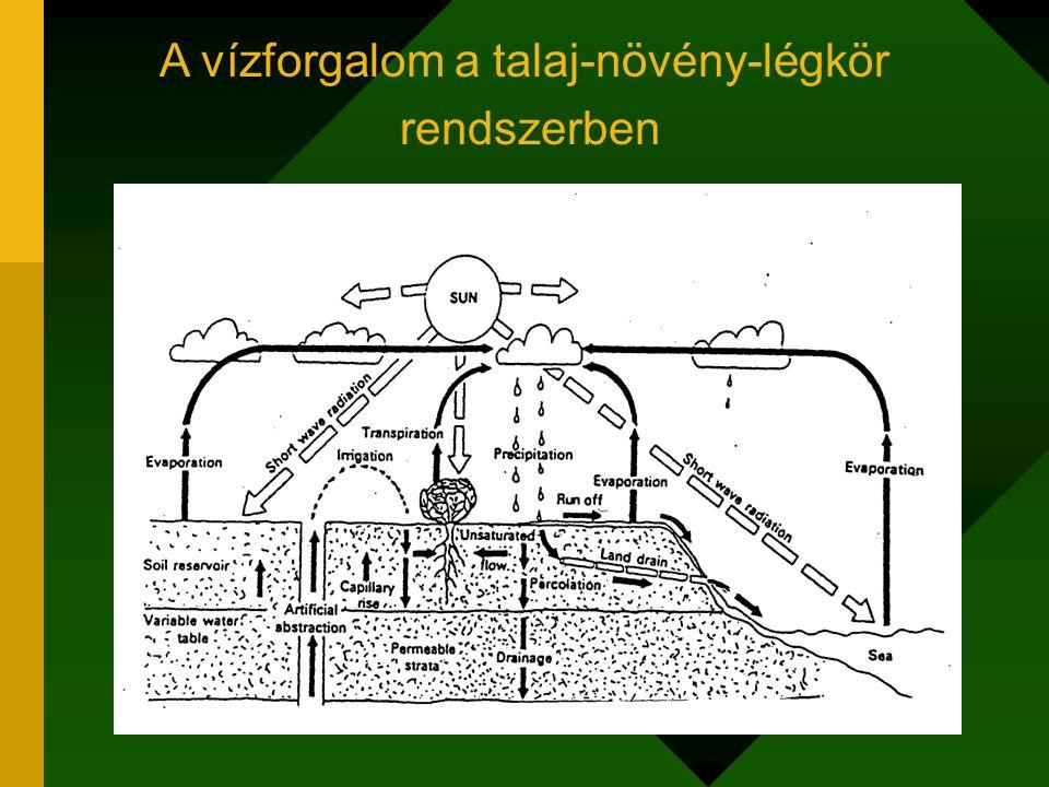 A talajvízforgalom kapacitív leírása Térfogat (D*A), porozitás (d), felvehető vízmennyiség (b*A) talajmélység (D) A = terület- egység (1 ha) Területegység Szilárdfázis Víz Levegő