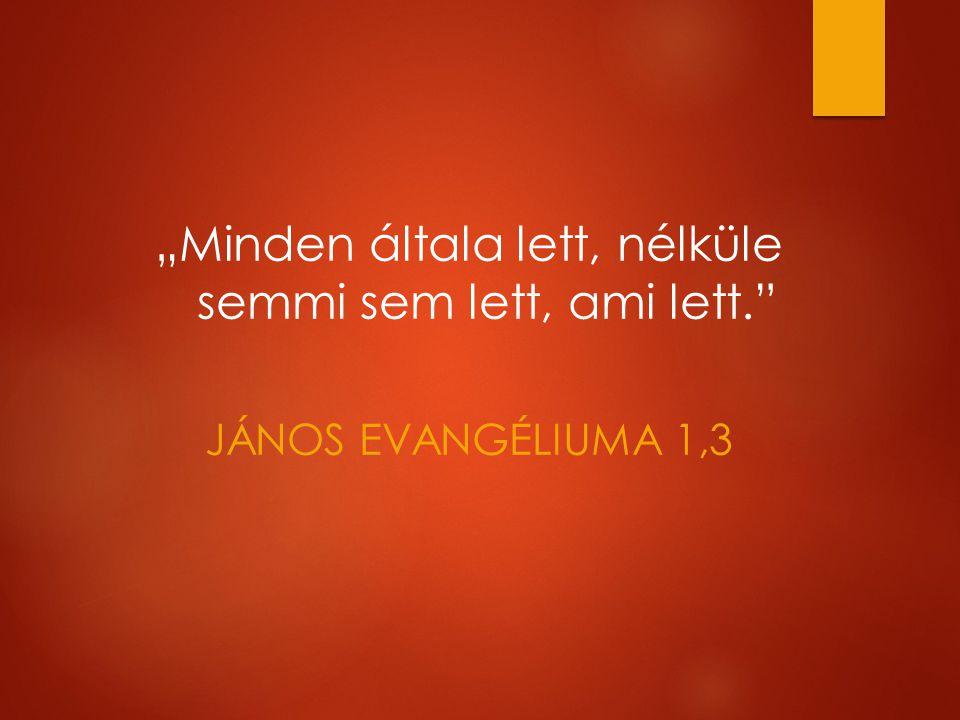 """""""Minden általa lett, nélküle semmi sem lett, ami lett. JÁNOS EVANGÉLIUMA 1,3"""
