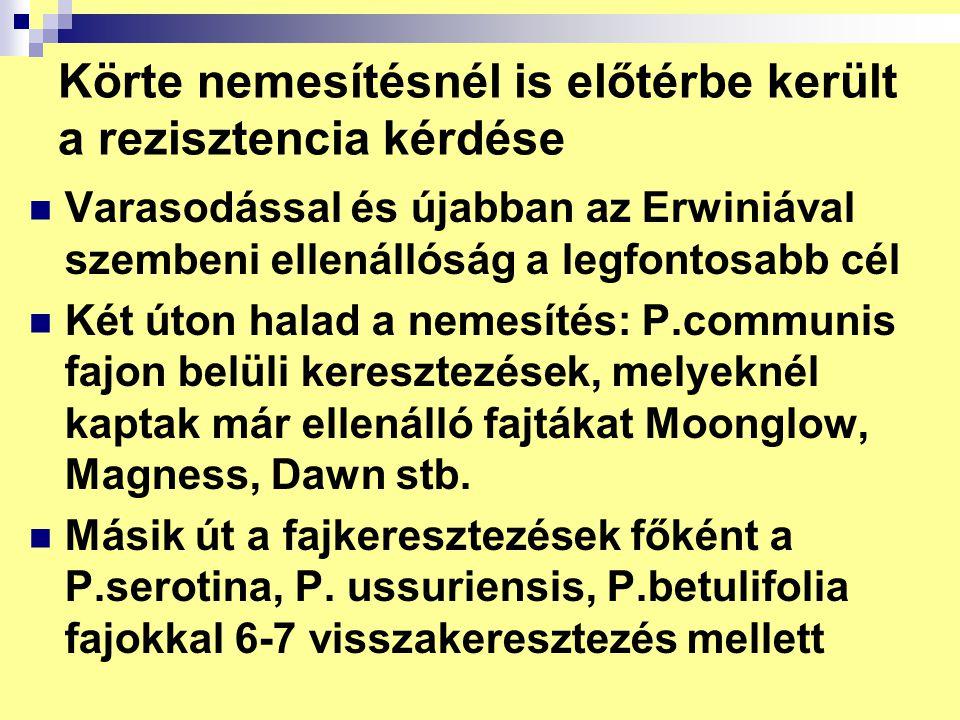 Körte nemesítésnél is előtérbe került a rezisztencia kérdése Varasodással és újabban az Erwiniával szembeni ellenállóság a legfontosabb cél Két úton h