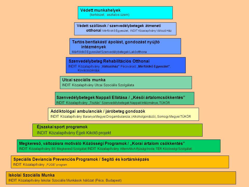 Az INDIT Közalapítvány intézményi rendszere ELLÁTÁSI PIRAMIS Iskolai Szociális Munka INDIT Közalapítvány Iskolai Szociális Munkások hálózat (Pécs, Bud