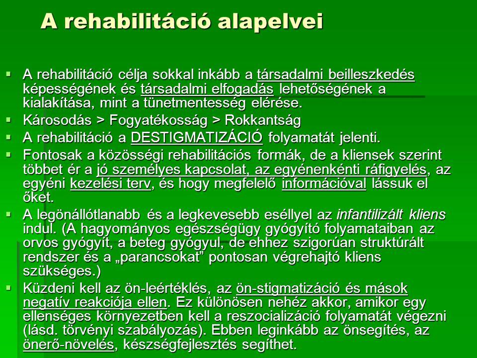 A rehabilitáció alapelvei  A rehabilitáció célja sokkal inkább a társadalmi beilleszkedés képességének és társadalmi elfogadás lehetőségének a kialak