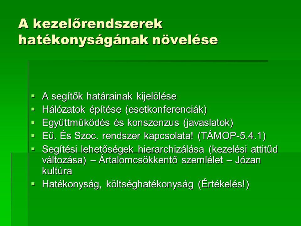 A kezelőrendszerek hatékonyságának növelése  A segítők határainak kijelölése  Hálózatok építése (esetkonferenciák)  Együttműködés és konszenzus (ja
