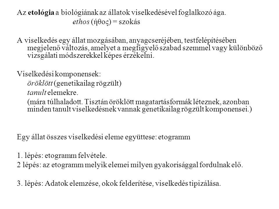 Az etológia a biológiának az állatok viselkedésével foglalkozó ága. ethos (ήθος) = szokás A viselkedés egy állat mozgásában, anyagcseréjében, testfelé