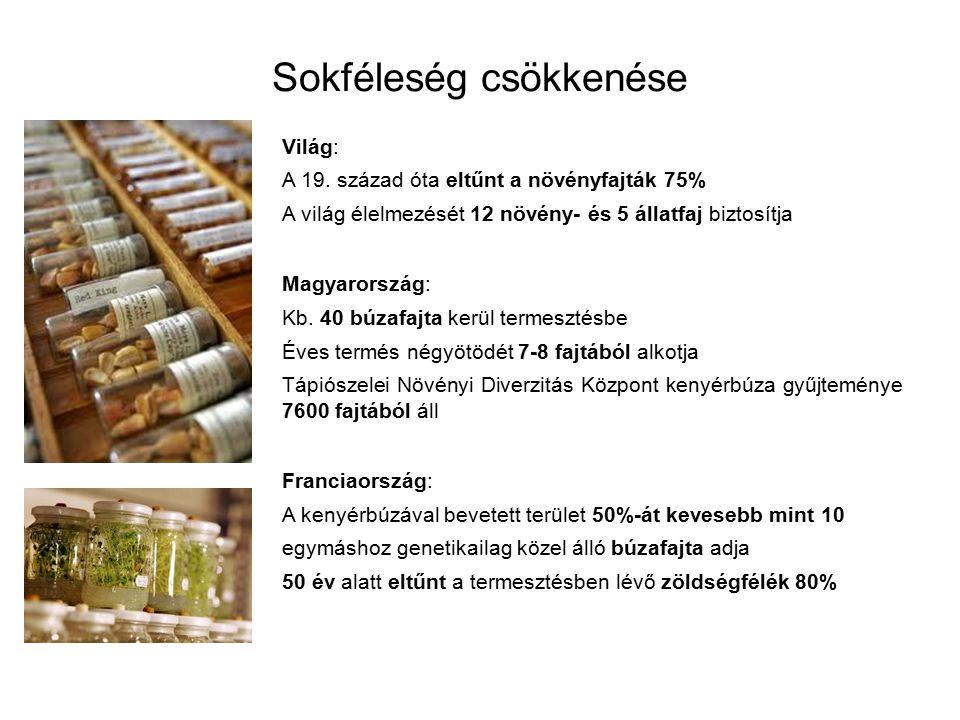 Sokféleség csökkenése Világ: A 19. század óta eltűnt a növényfajták 75% A világ élelmezését 12 növény- és 5 állatfaj biztosítja Magyarország: Kb. 40 b
