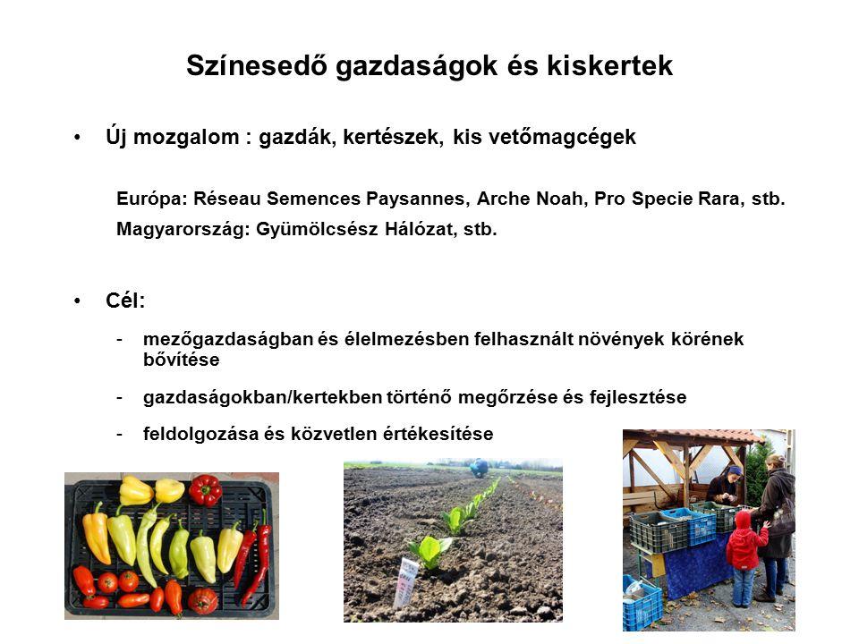 Színesedő gazdaságok és kiskertek Új mozgalom : gazdák, kertészek, kis vetőmagcégek Európa: Réseau Semences Paysannes, Arche Noah, Pro Specie Rara, st