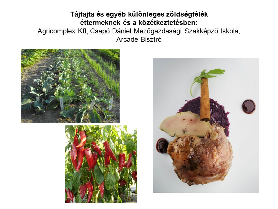 Tájfajta és egyéb különleges zöldségfélék éttermeknek és a közétkeztetésben: Agricomplex Kft, Csapó Dániel Mezőgazdasági Szakképző Iskola, Arcade Bisz