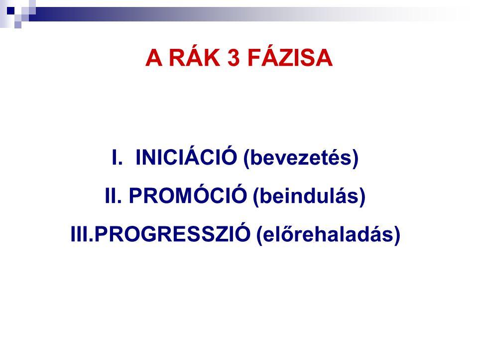 A RÁK 3 FÁZISA I.INICIÁCIÓ (bevezetés) II.PROMÓCIÓ (beindulás) III.PROGRESSZIÓ (előrehaladás)