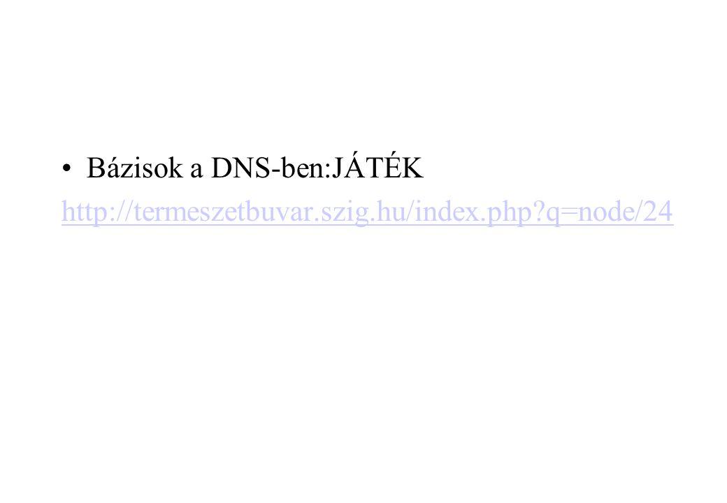 Bázisok a DNS-ben:JÁTÉK http://termeszetbuvar.szig.hu/index.php?q=node/24 a DNS-ben:JÁTÉK http://termeszetbuvar.szig.hu/index.php?q=node/2 4