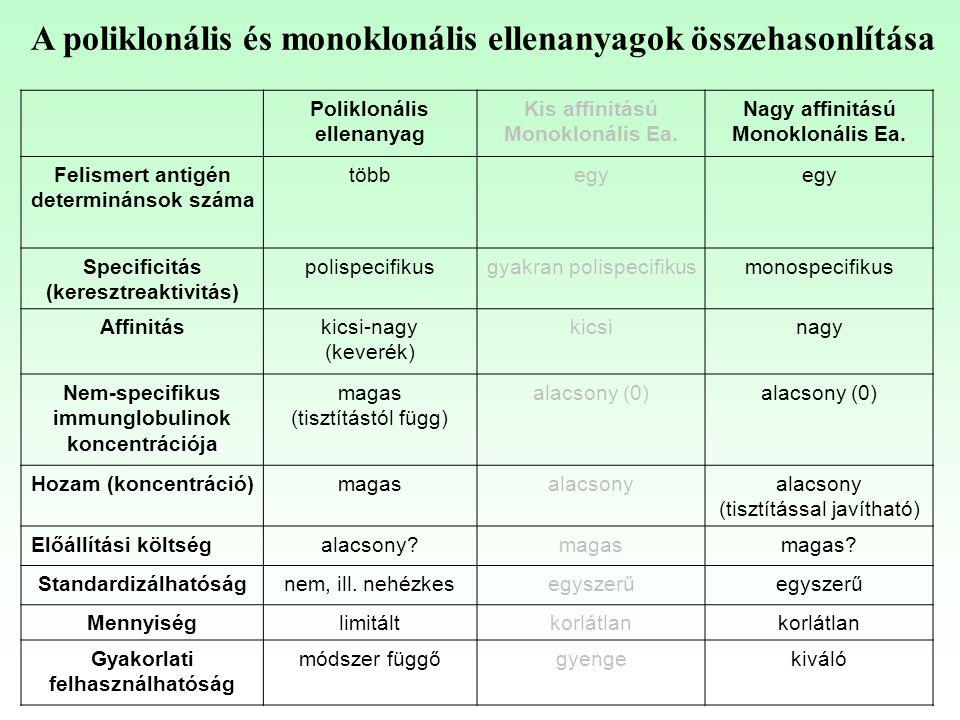Poliklonális ellenanyag Kis affinitású Monoklonális Ea. Nagy affinitású Monoklonális Ea. Felismert antigén determinánsok száma többegy Specificitás (k