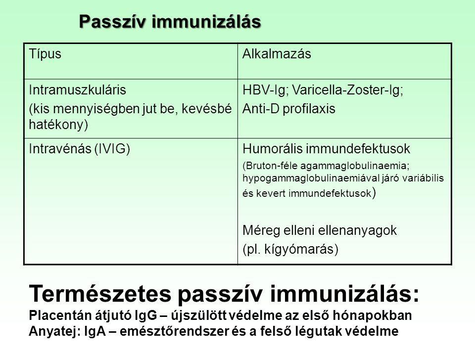Passzív immunizálás TípusAlkalmazás Intramuszkuláris (kis mennyiségben jut be, kevésbé hatékony) HBV-Ig; Varicella-Zoster-Ig; Anti-D profilaxis Intrav