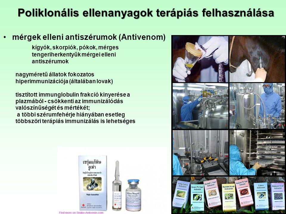 Poliklonális ellenanyagok terápiás felhasználása mérgek elleni antiszérumok (Antivenom) kígyók, skorpiók, pókok, mérges tengeriherkentyűk mérgei ellen