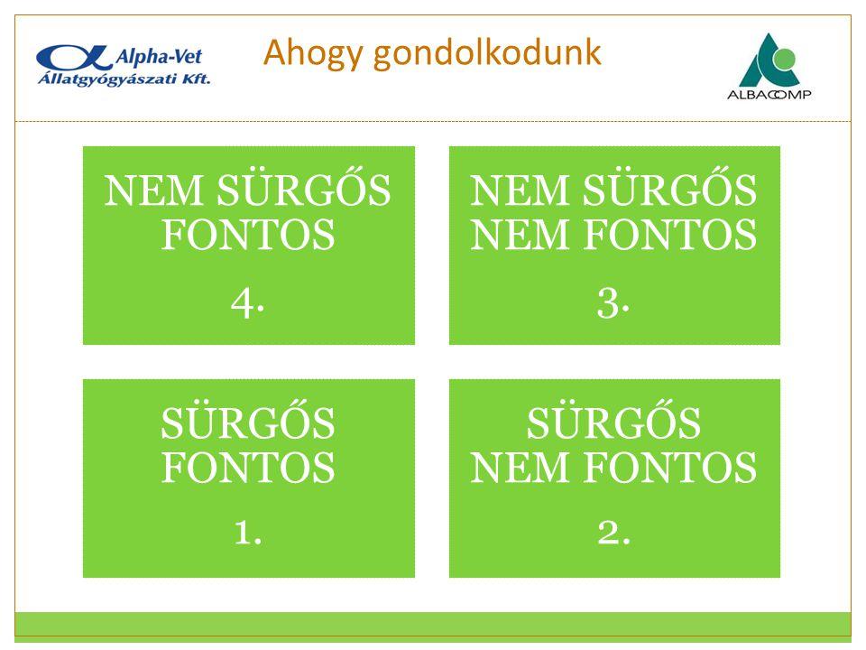 Ahogy gondolkodunk NEM SÜRGŐS FONTOS 4. NEM SÜRGŐS NEM FONTOS 3. SÜRGŐS FONTOS 1. SÜRGŐS NEM FONTOS 2.