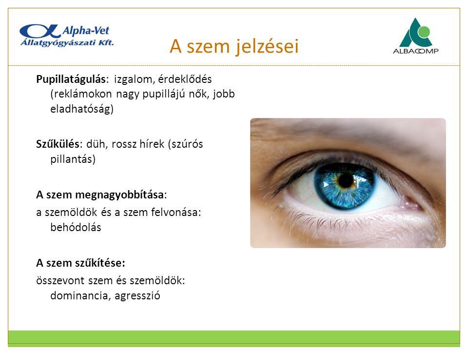 A szem jelzései Pupillatágulás: izgalom, érdeklődés (reklámokon nagy pupillájú nők, jobb eladhatóság) Szűkülés: düh, rossz hírek (szúrós pillantás) A