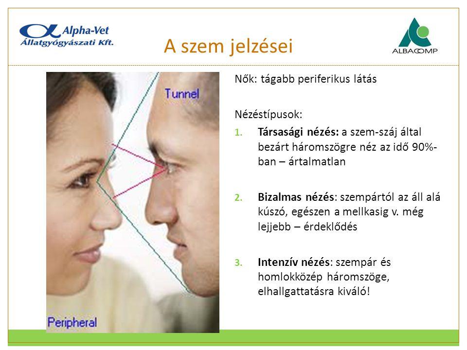 A szem jelzései Nők: tágabb periferikus látás Nézéstípusok: 1. Társasági nézés: a szem-száj által bezárt háromszögre néz az idő 90%- ban – ártalmatlan