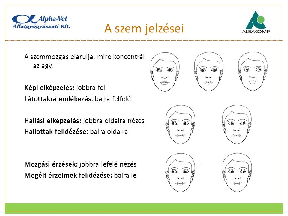 A szem jelzései A szemmozgás elárulja, mire koncentrál az agy. Képi elképzelés: jobbra fel Látottakra emlékezés: balra felfelé Hallási elképzelés: job