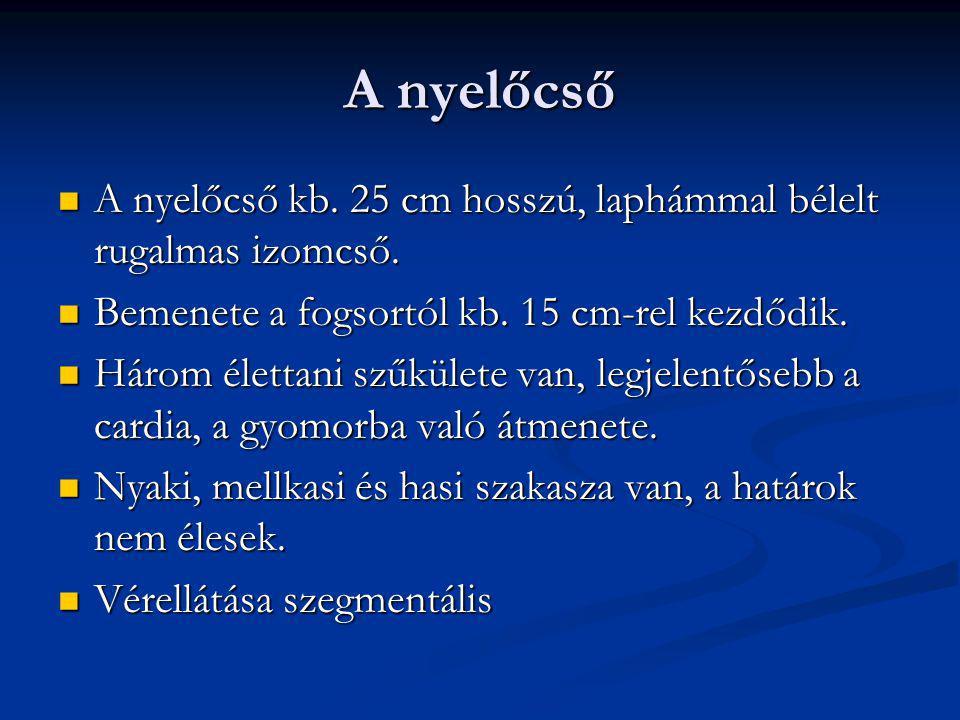 Gyomor rák Hamar ad áttétet, metastasist Hamar ad áttétet, metastasist Nyirok Nyirok Vér Vér Közvetlen szóródás útján Közvetlen szóródás útján Diagnózis: Diagnózis: Endoscopia szövettannal Endoscopia szövettannal Gyomor RTG Gyomor RTG