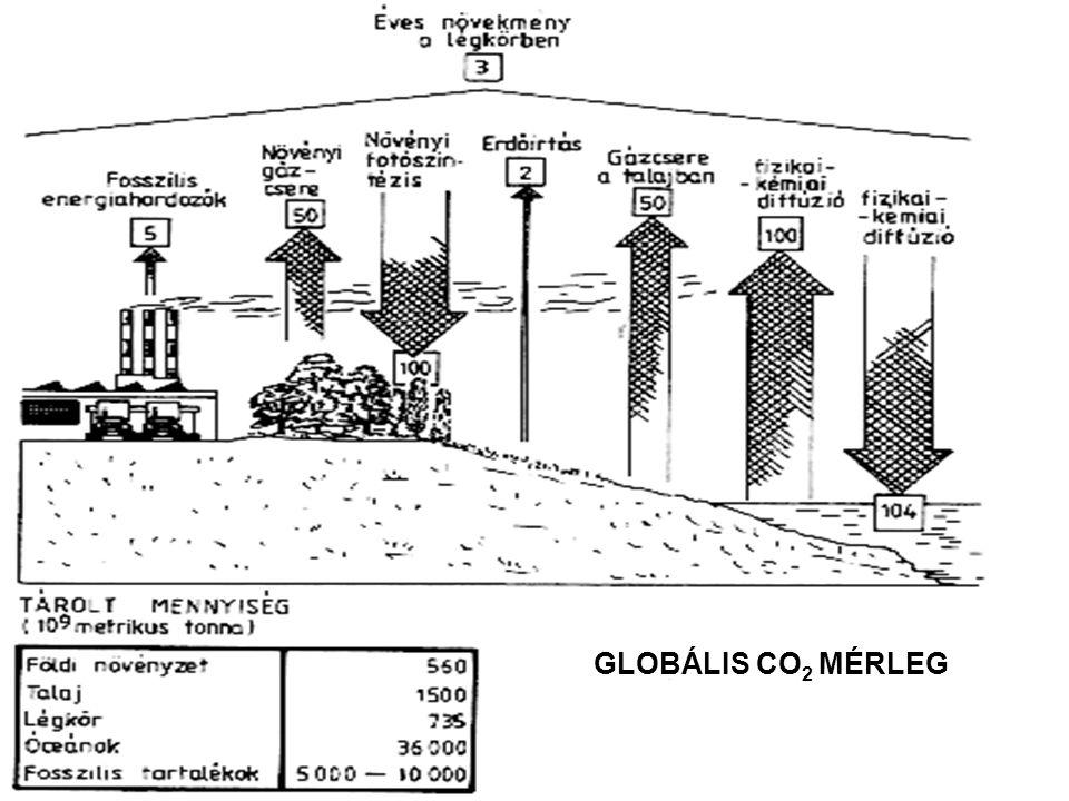 GLOBÁLIS CO 2 MÉRLEG