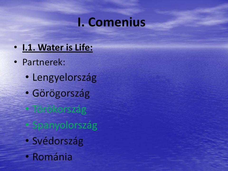 I. Comenius I.1.