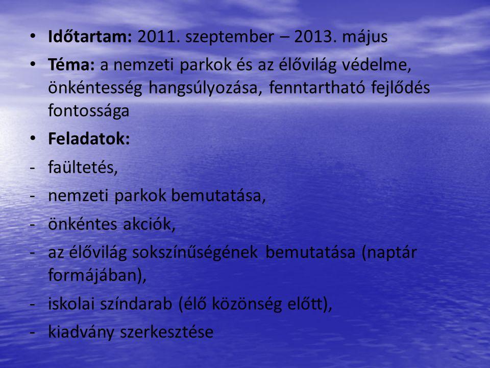 Magyarországi projekttalálkozó nagyvonalakban – 2011.