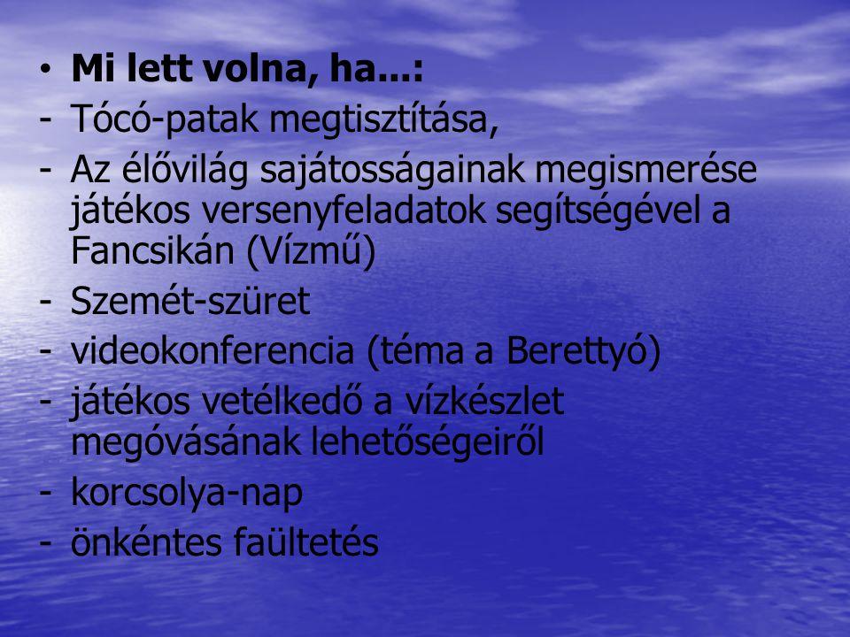 Testvériskolai kapcsolat 2.sz. Általános Iskola SZOVÁTA Együttműködés kezdete: 2010.