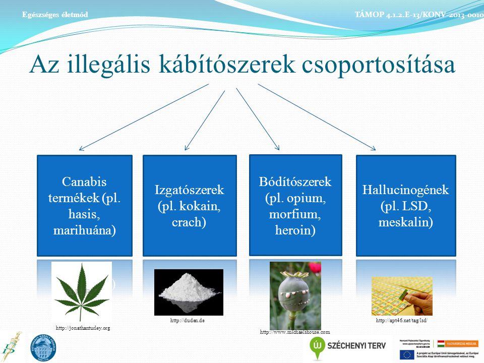 Az illegális kábítószerek csoportosítása TÁMOP 4.1.2.E-13/KONV-2013-0010 Egészséges életmód http://jonathanturley.org http://duden.de http://www.michaelshouse.com http://apt46.net/tag/lsd/