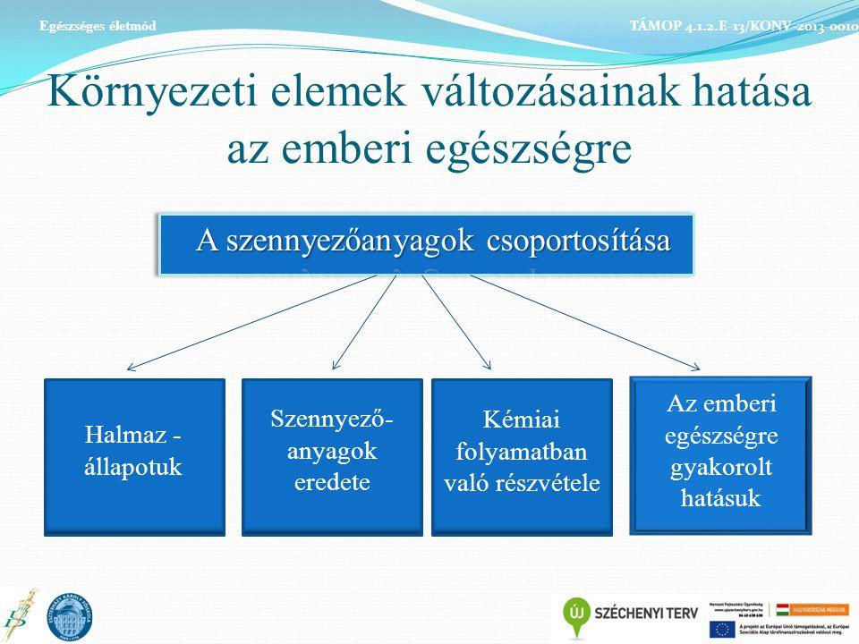 Környezeti elemek változásainak hatása az emberi egészségre TÁMOP 4.1.2.E-13/KONV-2013-0010 Egészséges életmód Halmaz - állapotuk Szennyező- anyagok e