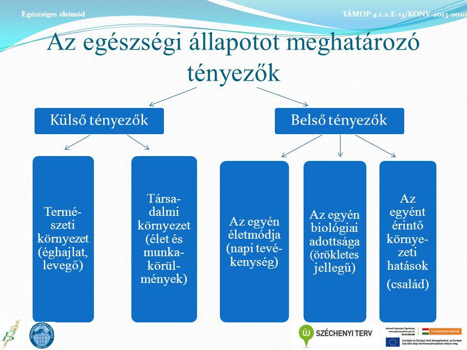 Az egészségi állapotot meghatározó tényezők Külső tényezők Termé- szeti környezet (éghajlat, levegő) Belső tényezők Az egyén életmódja (napi tevé- kenység) Társa- dalmi környezet (élet és munka- körül- mények) Az egyén biológiai adottsága (örökletes jellegű) Az egyént érintő környe- zeti hatások (család) TÁMOP 4.1.2.E-13/KONV-2013-0010 Egészséges életmód
