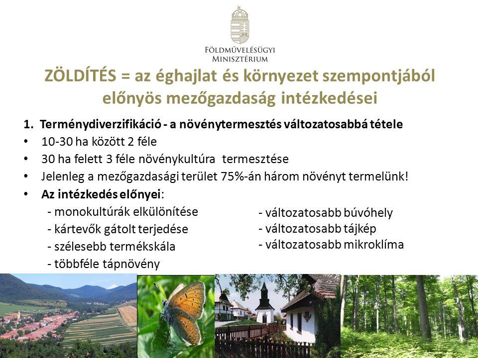 ZÖLDÍTÉS = az éghajlat és környezet szempontjából előnyös mezőgazdaság intézkedései 1. Terménydiverzifikáció - a növénytermesztés változatosabbá tétel