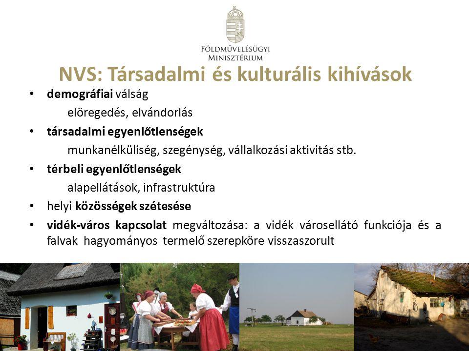 NVS: Társadalmi és kulturális kihívások demográfiai válság elöregedés, elvándorlás társadalmi egyenlőtlenségek munkanélküliség, szegénység, vállalkozá