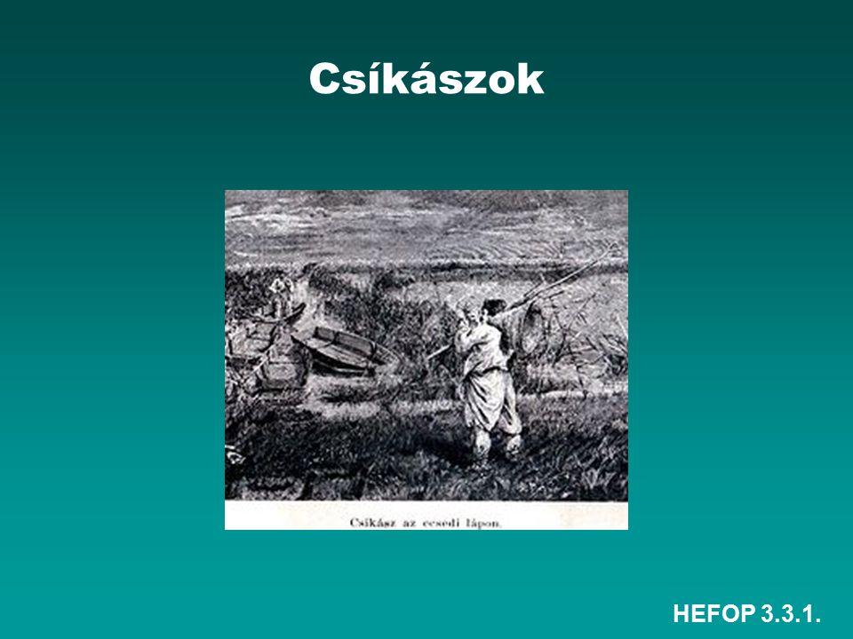 Csíkászok HEFOP 3.3.1.