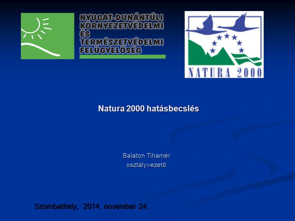 Natura 2000 hatásbecslés Szombathely, 2014. november 24. Balaton Tihamér osztályvezető
