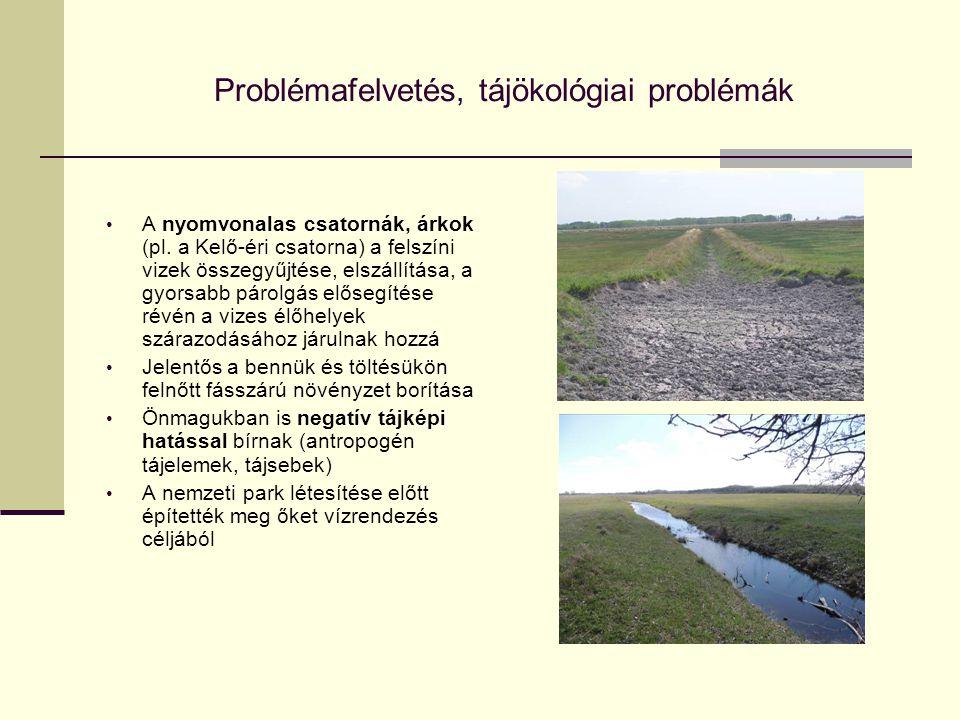 Problémafelvetés, tájökológiai problémák A nyomvonalas csatornák, árkok (pl. a Kelő-éri csatorna) a felszíni vizek összegyűjtése, elszállítása, a gyor