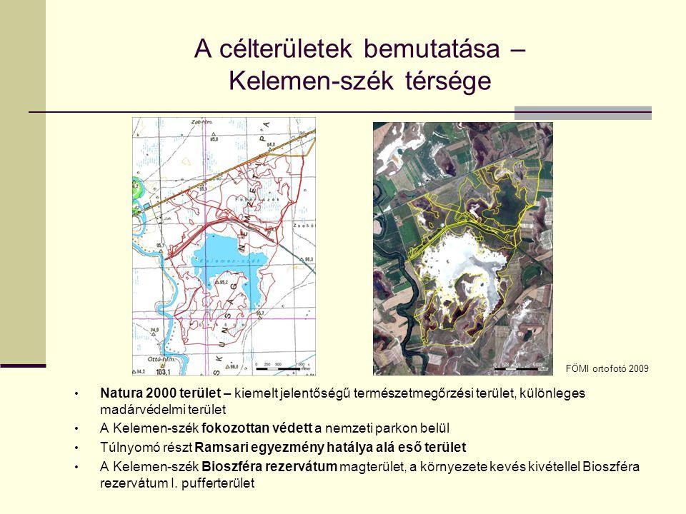 A célterületek bemutatása – Kelemen-szék térsége Natura 2000 terület – kiemelt jelentőségű természetmegőrzési terület, különleges madárvédelmi terület