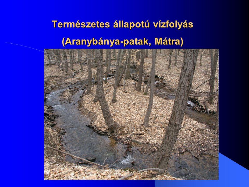 Természetes állapotú vízfolyás (Gyöngyös-patak, Kőszeg)