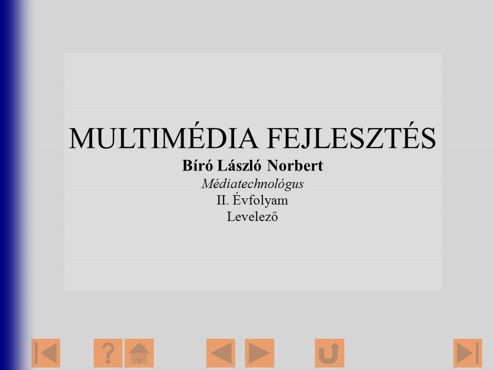 MULTIMÉDIA FEJLESZTÉS Bíró László Norbert Médiatechnológus II. Évfolyam Levelező