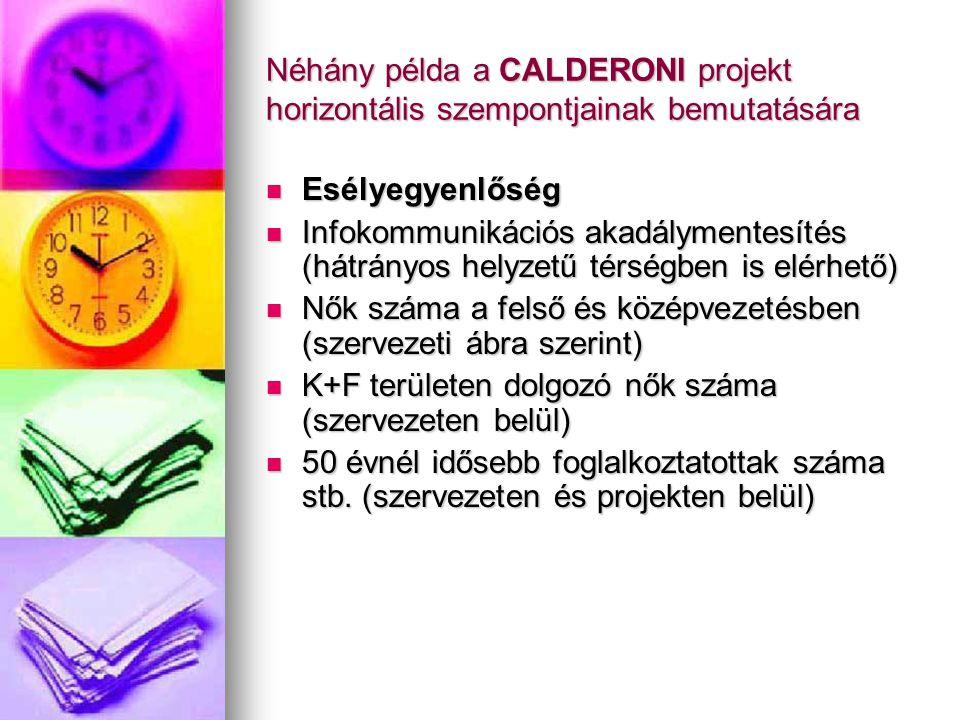 Néhány példa a CALDERONI projekt horizontális szempontjainak bemutatására Esélyegyenlőség Esélyegyenlőség Infokommunikációs akadálymentesítés (hátrány