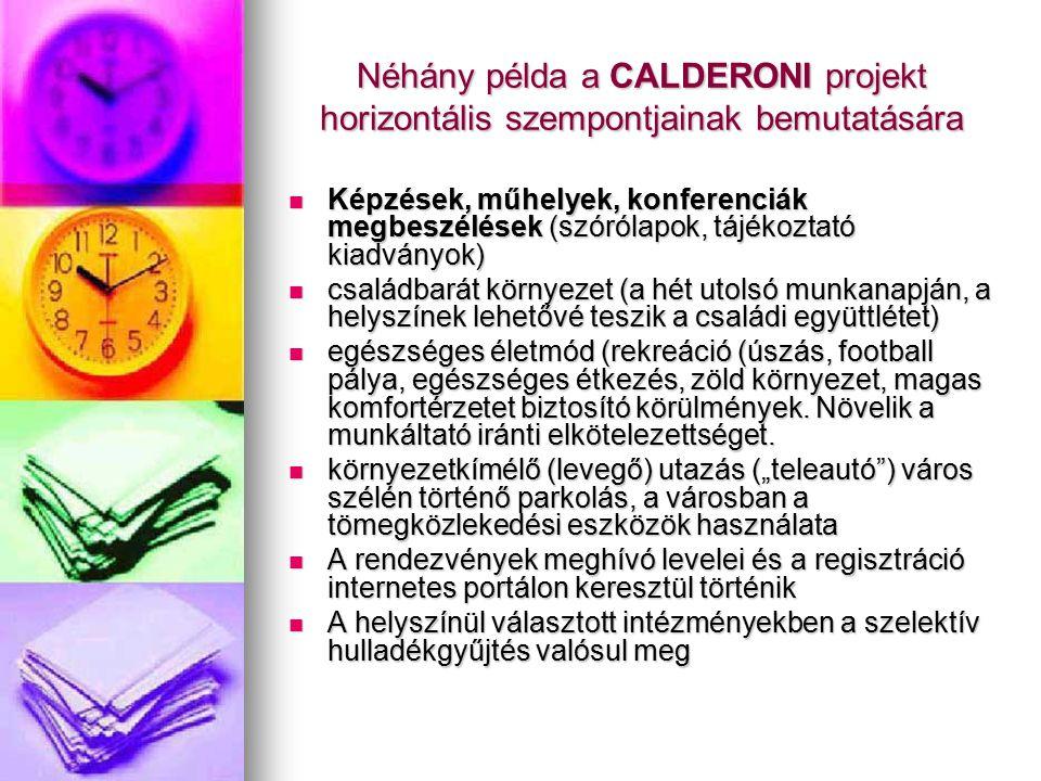Néhány példa a CALDERONI projekt horizontális szempontjainak bemutatására Képzések, műhelyek, konferenciák megbeszélések (szórólapok, tájékoztató kiad