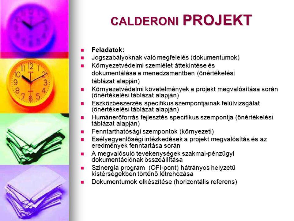 CALDERONI PROJEKT Feladatok: Feladatok: Jogszabályoknak való megfelelés (dokumentumok) Jogszabályoknak való megfelelés (dokumentumok) Környezetvédelmi