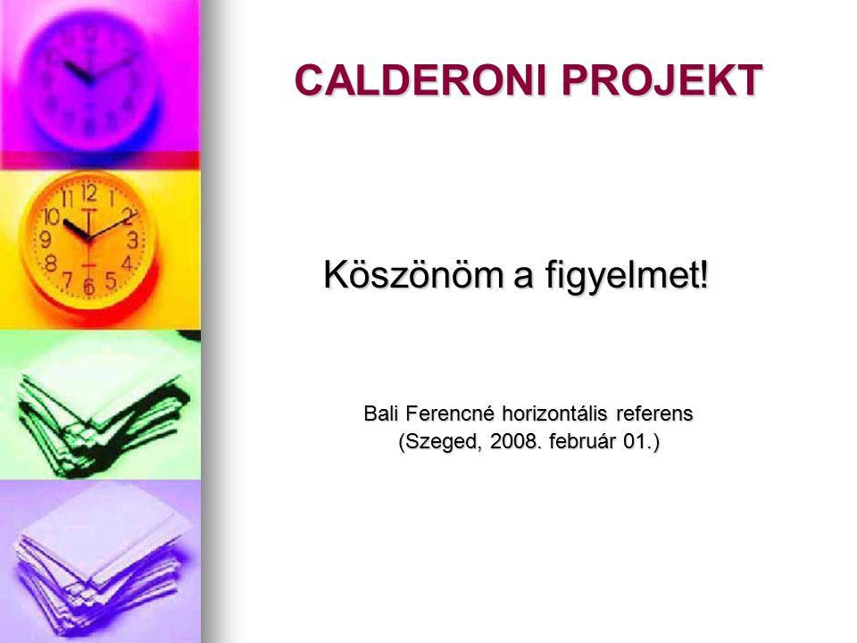 CALDERONI PROJEKT Köszönöm a figyelmet! Bali Ferencné horizontális referens (Szeged, 2008. február 01.)