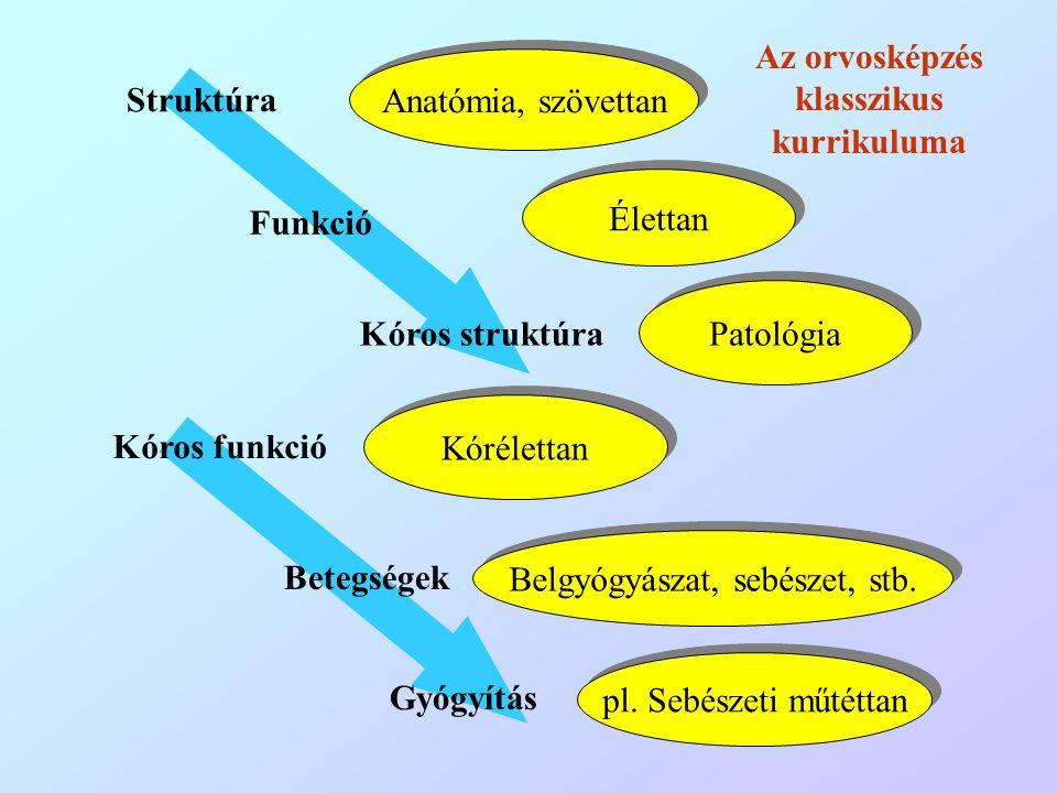 Struktúra Funkció Kóros struktúra Kóros funkció Betegségek Gyógyítás Anatómia, szövettan Élettan Patológia Kórélettan Belgyógyászat, sebészet, stb. pl