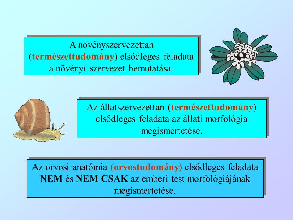A növényszervezettan (természettudomány) elsődleges feladata a növényi szervezet bemutatása. Az állatszervezettan (természettudomány) elsődleges felad